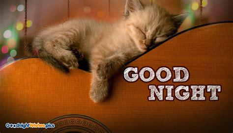 good night funny  goodnightwishespics