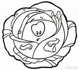 Cabbage Coloring Colorear Dibujos Repollos sketch template