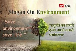 Short Essay On Environment Pollution you are doing homework the type of cover letter written to inquire about possible job openings quizlet doing other people's homework