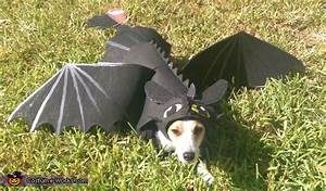 Toothless Dragon Dog Costume