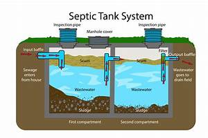 Septic Systems 101  What Homeowners Need To Know