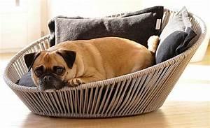Panier Pour Chien Original : bien choisir le panier de son chien bien choisir ~ Teatrodelosmanantiales.com Idées de Décoration