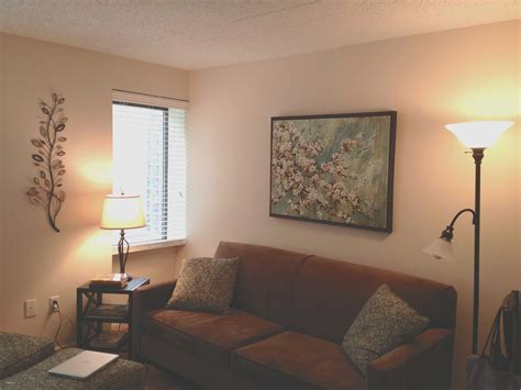 apartment living room ideas on a budget lovely college apartment decorating ideas on a budget