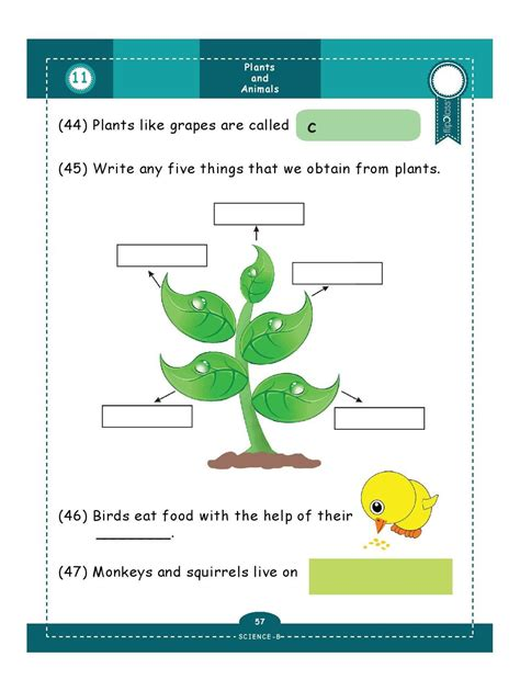 worksheets for grade 1 science worksheet exle