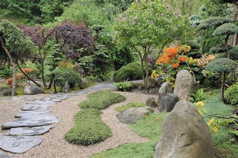 Japanischer Chinesischer Garten Pflanzen by Garden Baume Japanischer Garten
