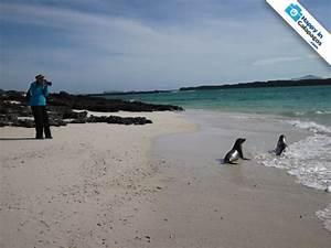 Galapagos Photos An awesome place to take amazing photos