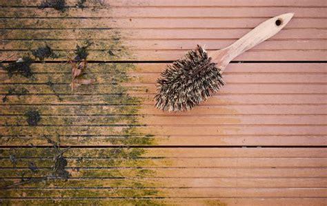 flechten entfernen soda gr 252 nbelag entfernen hausmittel gegen flechten moose und