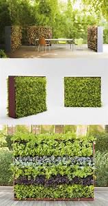 Vertical, Garden, Greenery, By, Paola, Lenti