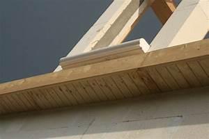 Cache moineau toiture Revêtements modernes du toit