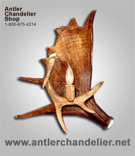 Antler Chandelier Shop by Real Antler Moose Whitetail Sconce Ls Acs Lights