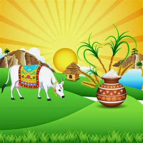 makar sankranti pongal   telugu marathi kannada images wishes messages