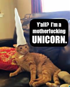 cat a unicorn vengeance is a dish best served with horns