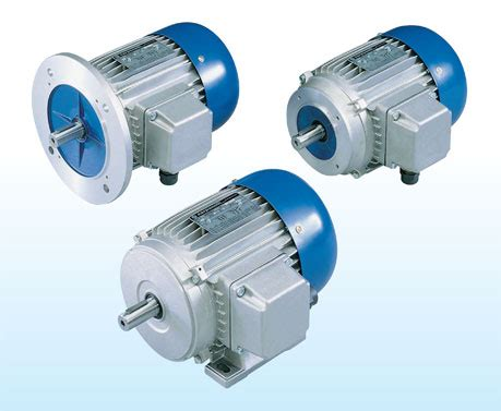 Electric Motor Italy by Standard Electric Motors Carpanelli Specialist
