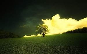 peartreedesigns: Beautiful Natural Morning Widescreen ...