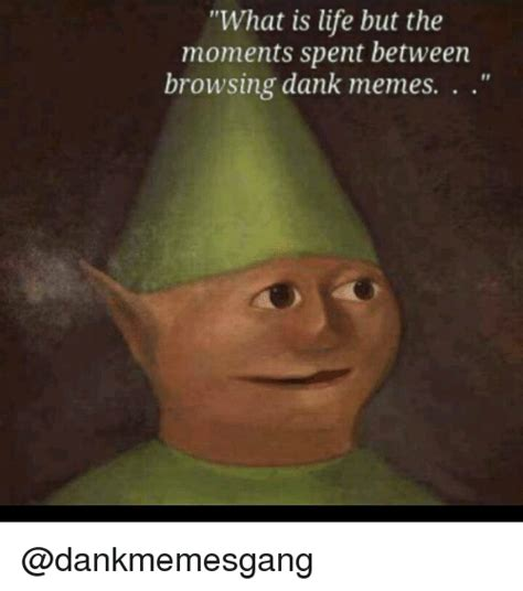 What Sa Meme - what is life but the moments spent between browsing dank memes dank meme on sizzle