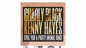 Charly Black - Gyal You A Party Animal (Kenny Hayes Remix ...