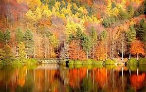 Beautiful Autumn Desktop Wallpaper - New HD Wallpapers