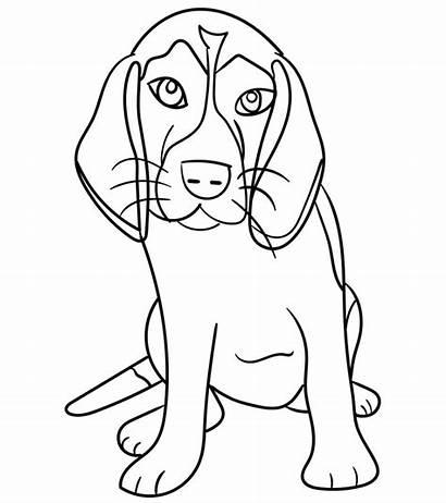 Gambar Diwarnai Untuk Anjing Hewan Belajarmewarnai