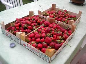 Arrosage Des Tomates : le blog de d d r colte et arrosage des tomates ~ Carolinahurricanesstore.com Idées de Décoration