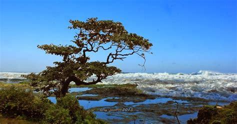 heryfosil daftar pantai pantai  gunungkidul