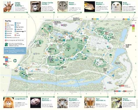 zoo bronx map pdf york guide information holidaymapq