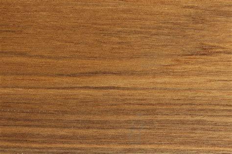 Holz Farbe by Teak Merkmale Eigenschaften Holz Vom Fach