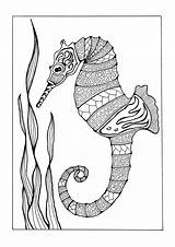 Coloring Adult Pages Adults Seahorse Sea Colorful Favecrafts Printable Books Under Creatures Horse Seahorses Intricate Templates Wildlife Fish sketch template