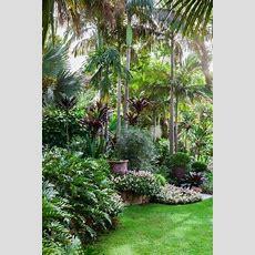 Fantastische 1000 Ideen über Tropische Gärten Auf