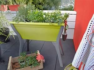 Jardinière Balcon Leroy Merlin : fleurir son balcon coup d 39 oeil sur les nouveaut s ~ Melissatoandfro.com Idées de Décoration