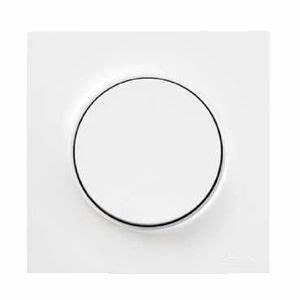 Plaque Schneider Odace : schneider odace styl plaque blanc 1 poste schneider ~ Dallasstarsshop.com Idées de Décoration