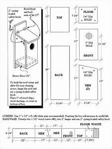 Kestrel Nest Box Plan