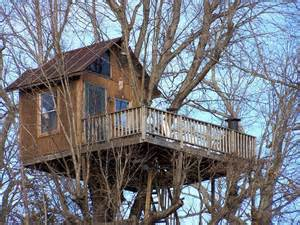 Your Watching Treehouse
