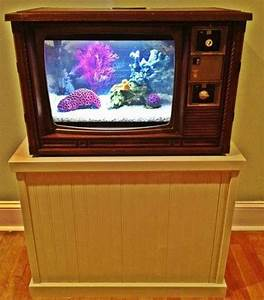 5 Amazingly Cool Fish Tanks for Your Home, Home & Garden ...