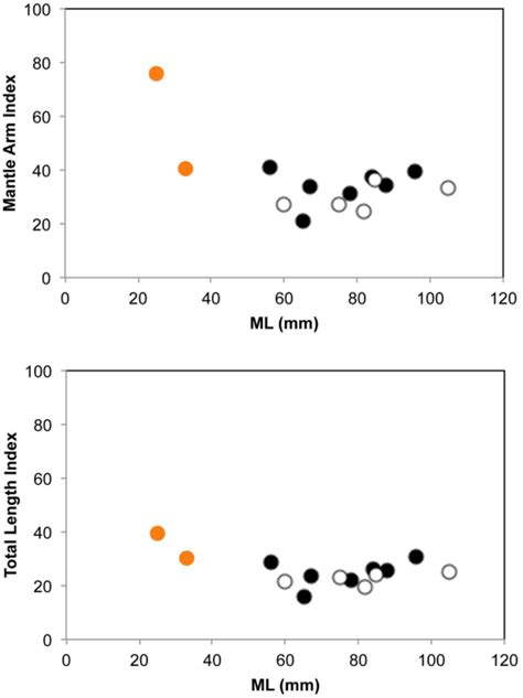 Frontiers | Extended Pelagic Life in a Bathybenthic
