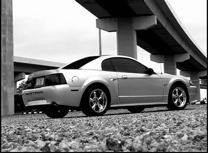 Mustang Gt 2000 Ford Wallpapers Mustangspecs