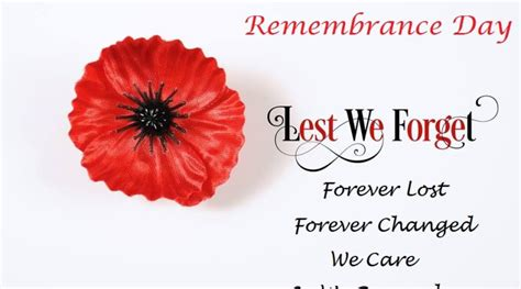 remembrance day poppy pictures images  quotes