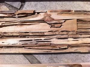 Bs Holzdesign Wandverkleidung : wandverkleidung holz fi bs holzdesign ~ Markanthonyermac.com Haus und Dekorationen