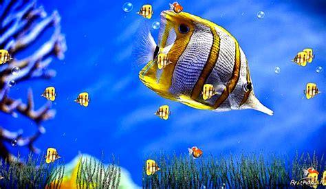 Aquarium Animated Wallpaper Windows 7 - animated screensavers for windows 7 best hd wallpapers