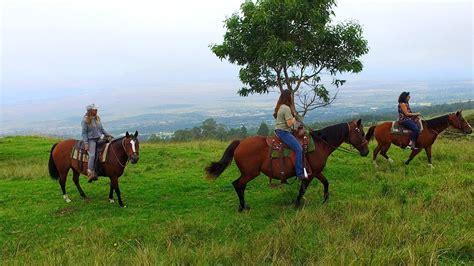 hawaii horseback riding things farms local visit activities