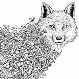 Wolf Coloring Pages Printable Hard Sheets Sheet Fox sketch template