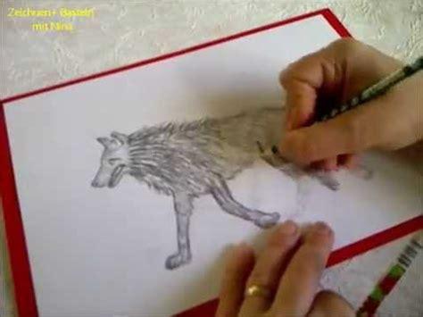 zeichnen lernen fuer anfaenger tiere malen wie zeichnet