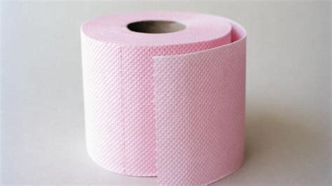 la mairie de part 224 la chasse au rouleau de papier toilette jetable