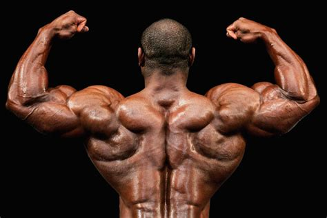 Feed Your Muscles: A Sample Bodybuilding Diet