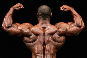 Feed Your Muscles  A Sample Bodybuilding Diet