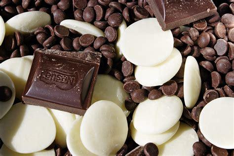 types of chocolate dosya various chocolate types jpg vikipedya