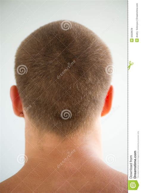 mans head  nape royalty  stock  image