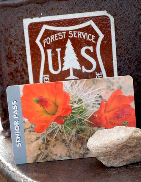 senior pass carrie cuinn are you 62 and live in the us get a national parks pass now