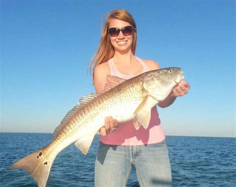 fishing george st report alligator point island vicky june carrabelle wiegand