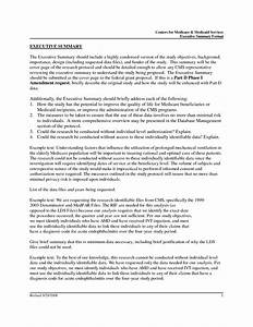 resume executive summary With apa format executive summary template