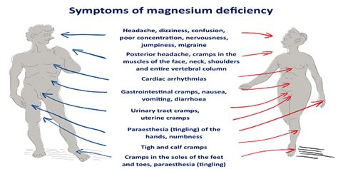 Magnesium Deficiency These Are The Symptoms! Healthy